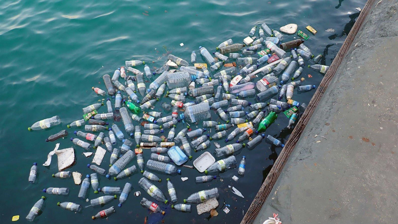 The Plight of Plastic | Zero Waste Journey